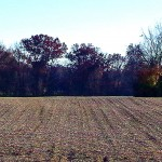 """132 Acres """"Foristell"""", St. Charles/Lincoln County, Missouri"""