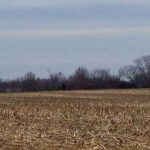 "142 Acres, ""Jonesburg"", Montgomery County, MO"